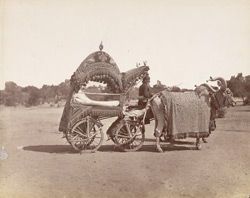Raja's bullock carriage [Rajasthan].